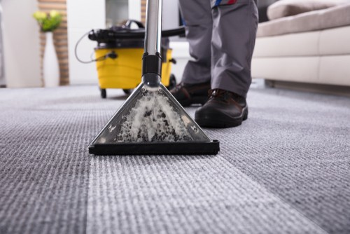 Effectiveness of shampooing carpets