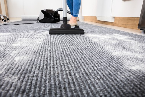 Looking for carpet cleaning services? Chat with us today!