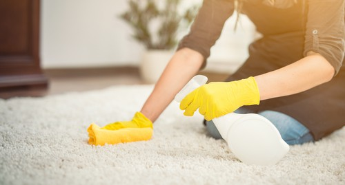 Can I Clean My Carpet with Just Water?